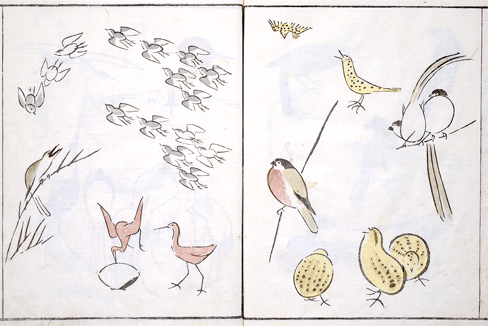A page from How to Draw Birds, Insects and Fish Simply